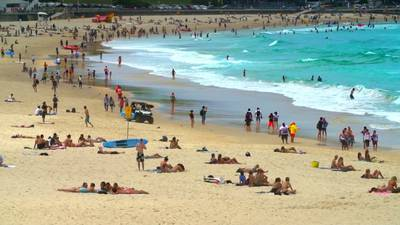 Australia surfer, 15, dies after being mauled by shark